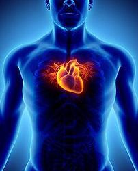 astaxanthin-mitochondrial-health.jpg