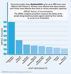 orac-antioxidant-chart.jpg