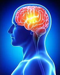 astaxanthin-cognitive-health.jpg