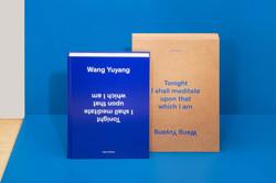 Wang-Yuyang_Flash-Art-2