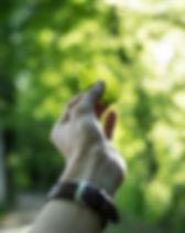 tobias-weinhold-hXPomXrpUP0-unsplash.jpg