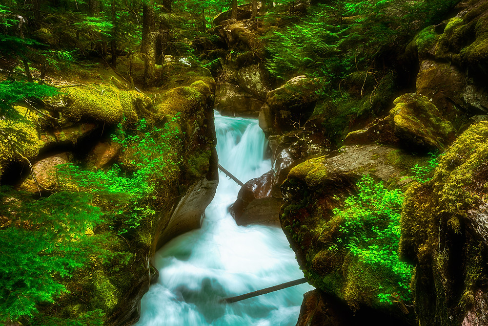 Glacial waters carving through rock of Avalanche Gorge, Glacier National Park, Montana