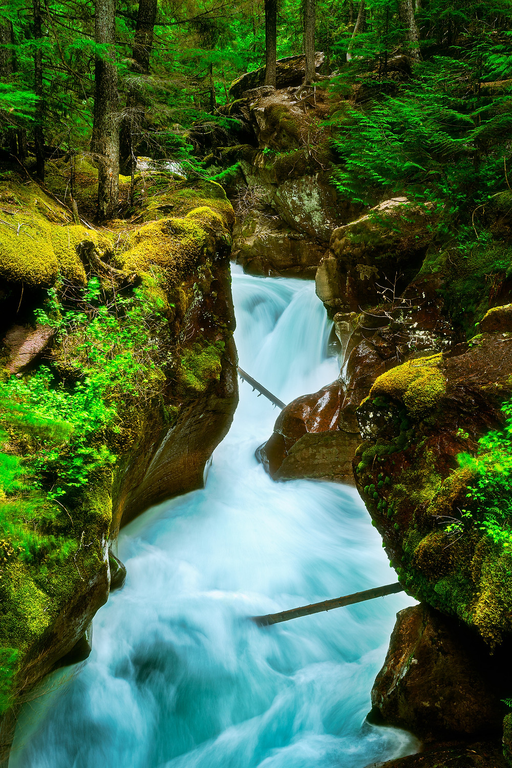 Glacial blue waters carving through beautiful red rock gorge in Glacier National Park.