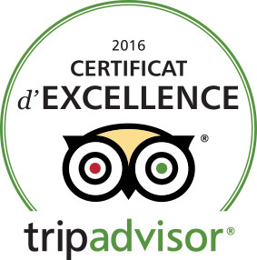 "Riad Fleur d'Orient just received today the Famous Tripadvisor ""Certificate of excellence"" for 2016"