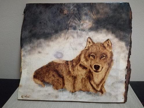 Nr. 23 - Pirografia su legno di Cirmolo.