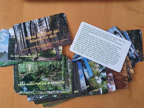 Kartenset - Nutze die Kraft der Bäume für dich