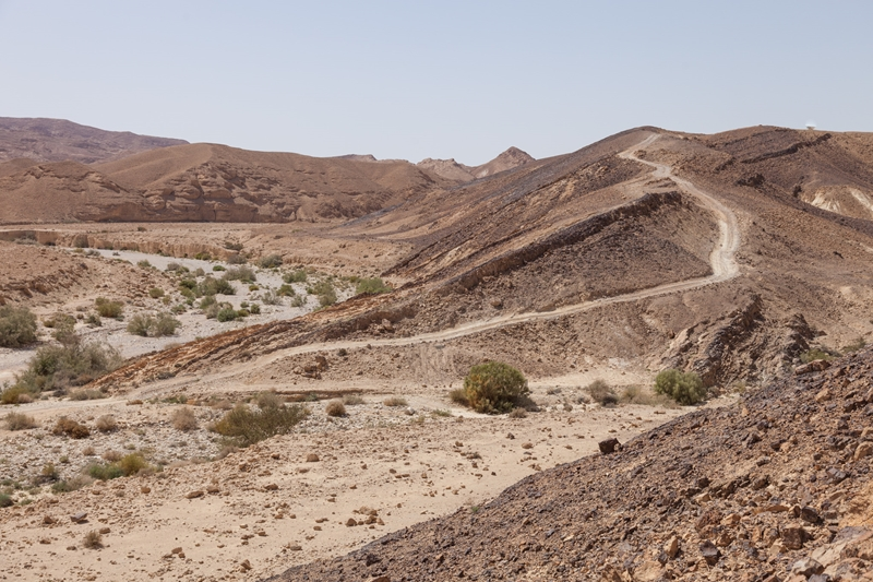 עומק המדבר (4)_site