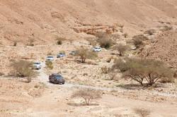 עומק המדבר (7)_site