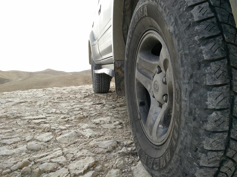 עומק המדבר (5)_site