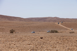 עומק המדבר (9)_site