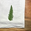 umbrella fern botanical kitchen towel
