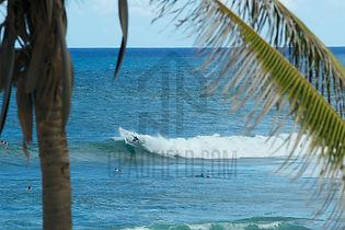 Surf guide in Barbados, Barbados surf trip.