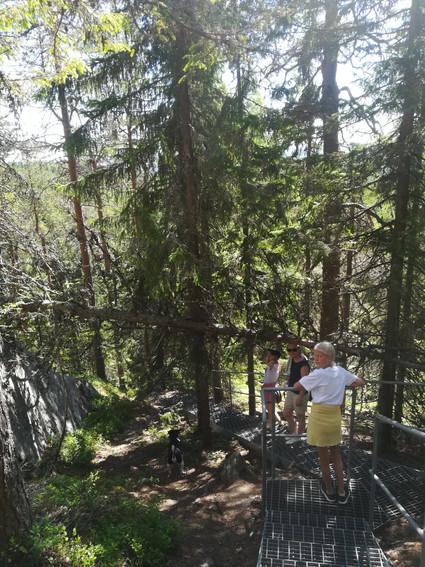 Retkellä Savossa, näköalatornista laskeutumassa.jpg