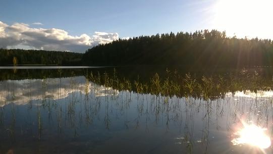 Kattilajärven rannalla.jpg