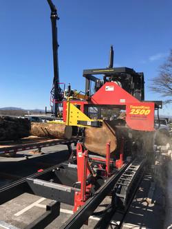 TimberKing 2500