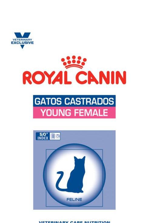 Alimento Gatos Royal Castrados Young Female