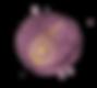 Fig and Flower, sussex wedding forist, surrey florist , kent florist