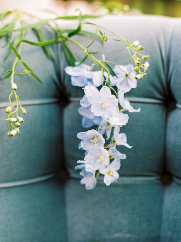 delphinuim, blue wedding flowers