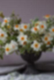 spring wedding flowers,compote bowl designs, garden gathered floral design, sussex florist ,surrey florist , kent florist ,