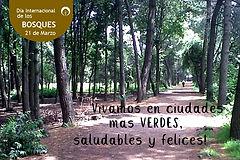Día_Bosques_.jpg