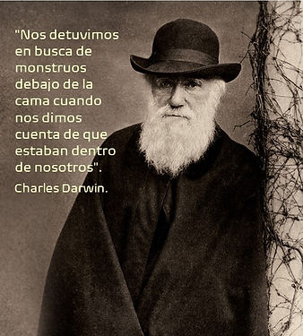 Darwin Face1.jpg