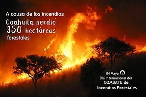 Incendios 1.jpg