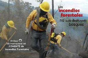 Incendios 2.jpg
