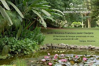 Jardines B 1.jpg