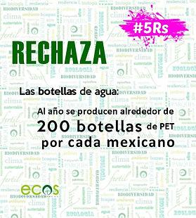 5RS Rechaza PET3.jpg