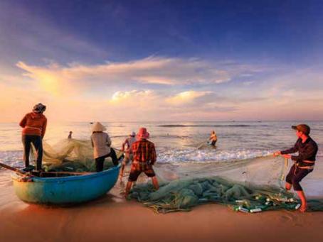 Urge una Regeneración de los ecosistemas marinos y terrestres