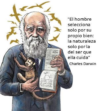 Darwin Face2.jpg