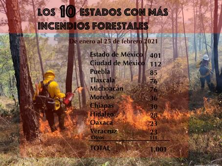La maldita primavera: nos esperan estiaje, contaminación e incendios.