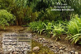 Jardines B 2.jpg