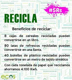 5RS Recicla beneficios1.jpg