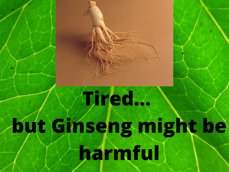 Tired... But Ginseng might be harmful!