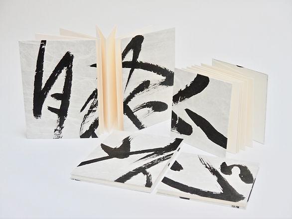 kozo-accordeon-carnet - 2.jpg
