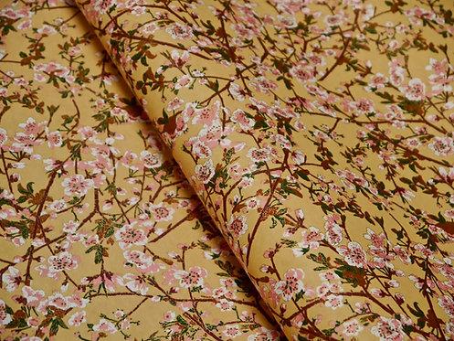 Sakura ciel crème