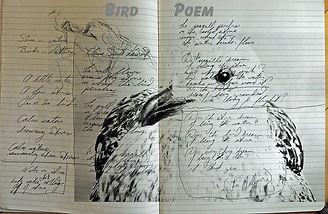 bird poem1.jpg