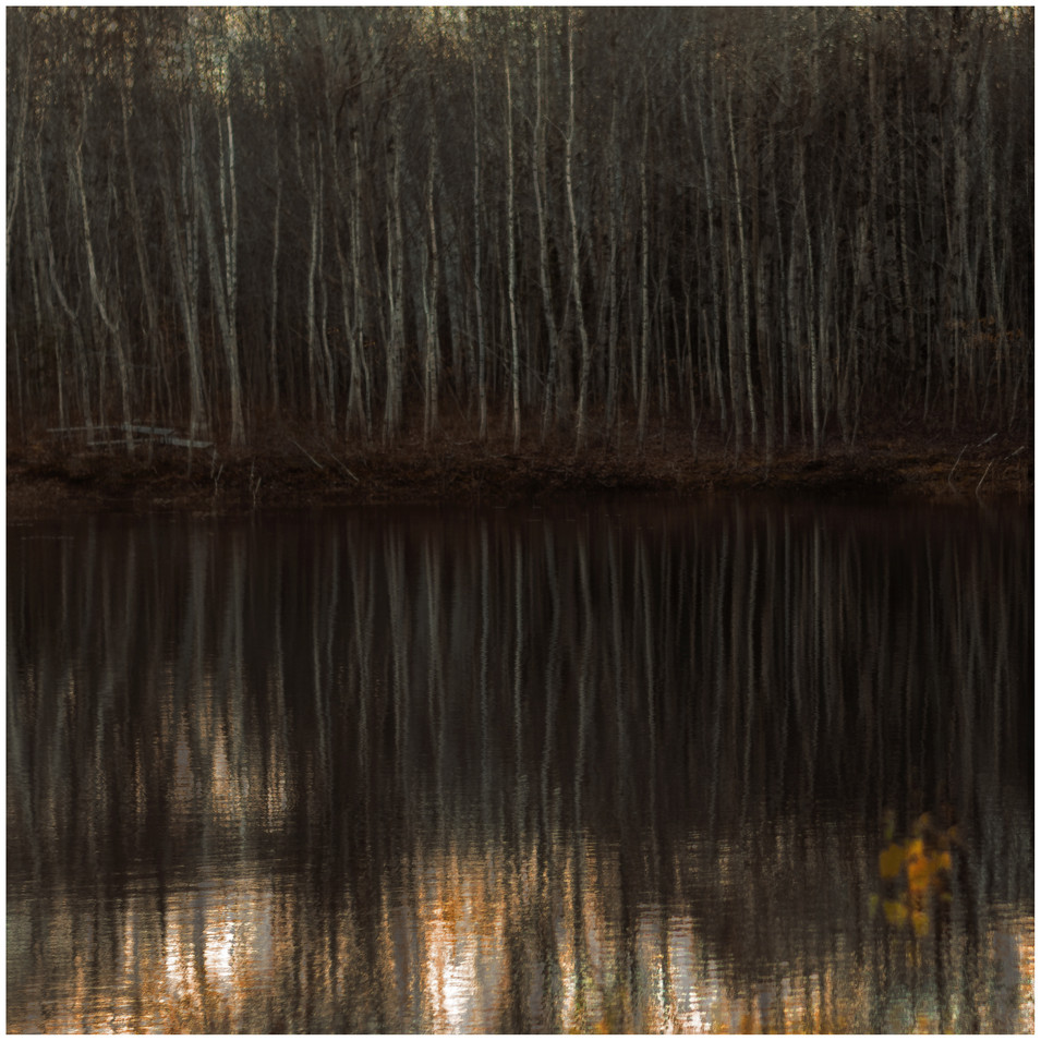 abstract reflections.jpg