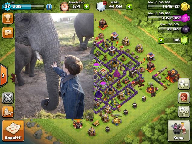 Elefant oder YouTube Star