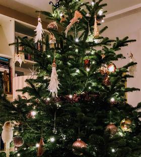 Weihnachten von Alpha bis Omega