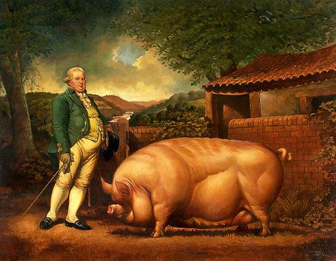 A Prize Pig