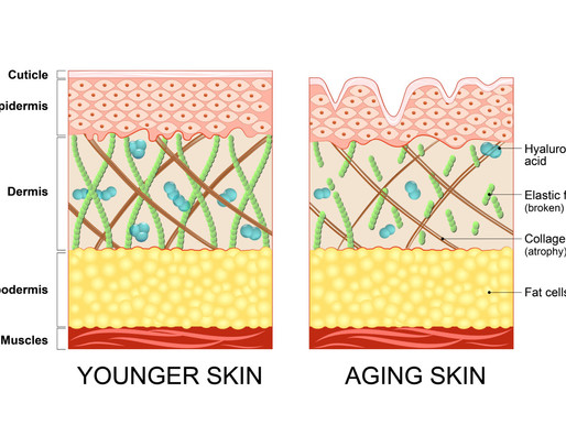 Is Collagen An Anti-Aging Miracle?
