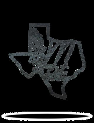 Texas Bluebonnet Monogram