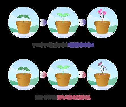 꽃키우기.png