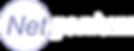 NetgeniumlogoWeb%20(1)_edited.png