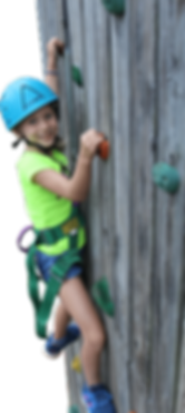 rock wall cut out smaller copy2.png