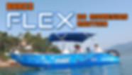 minuatura-flex.jpg