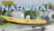 miniatura-narwhal.jpg