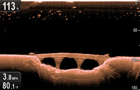 Imagens da sonda com tecnologia CHIRP da sonda e GPS DragonFly 5PRO